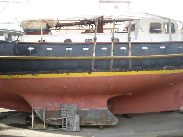 Boat Survey
